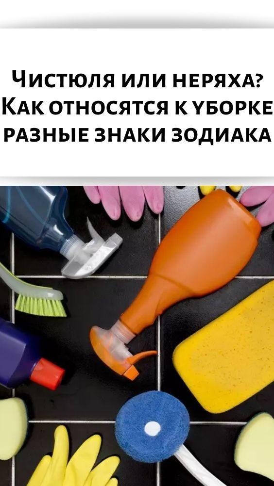 chistyulya-ili-neryaha_-kak-otnosyatsya-k-uborke-raznye-znaki-zodiaka-9251235