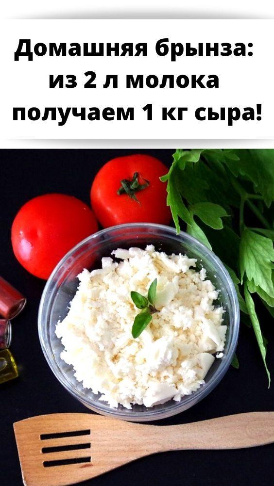 domashnyaya-brynza_-iz-2-l-moloka-poluchaem-1-kg-syra-8212070