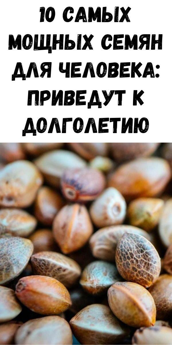 zhurnal-dlya-zhenschin-9-6299227
